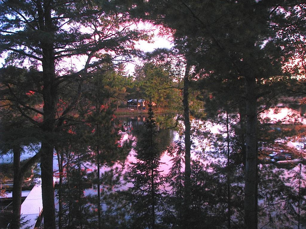 Dawn vista-2